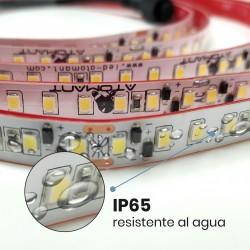 Tira LED Strip 5 metros Directa 220v Impermeable 60W 120 LED 4800LM 8