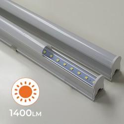 105 - T5 90CM 03