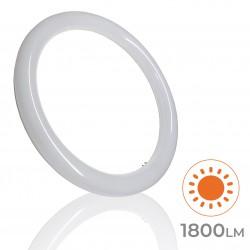 102 - TUBO CIRCULAR 18W - 02